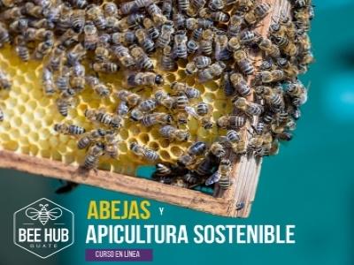 Abejas e introducción a la apicultura sostenible